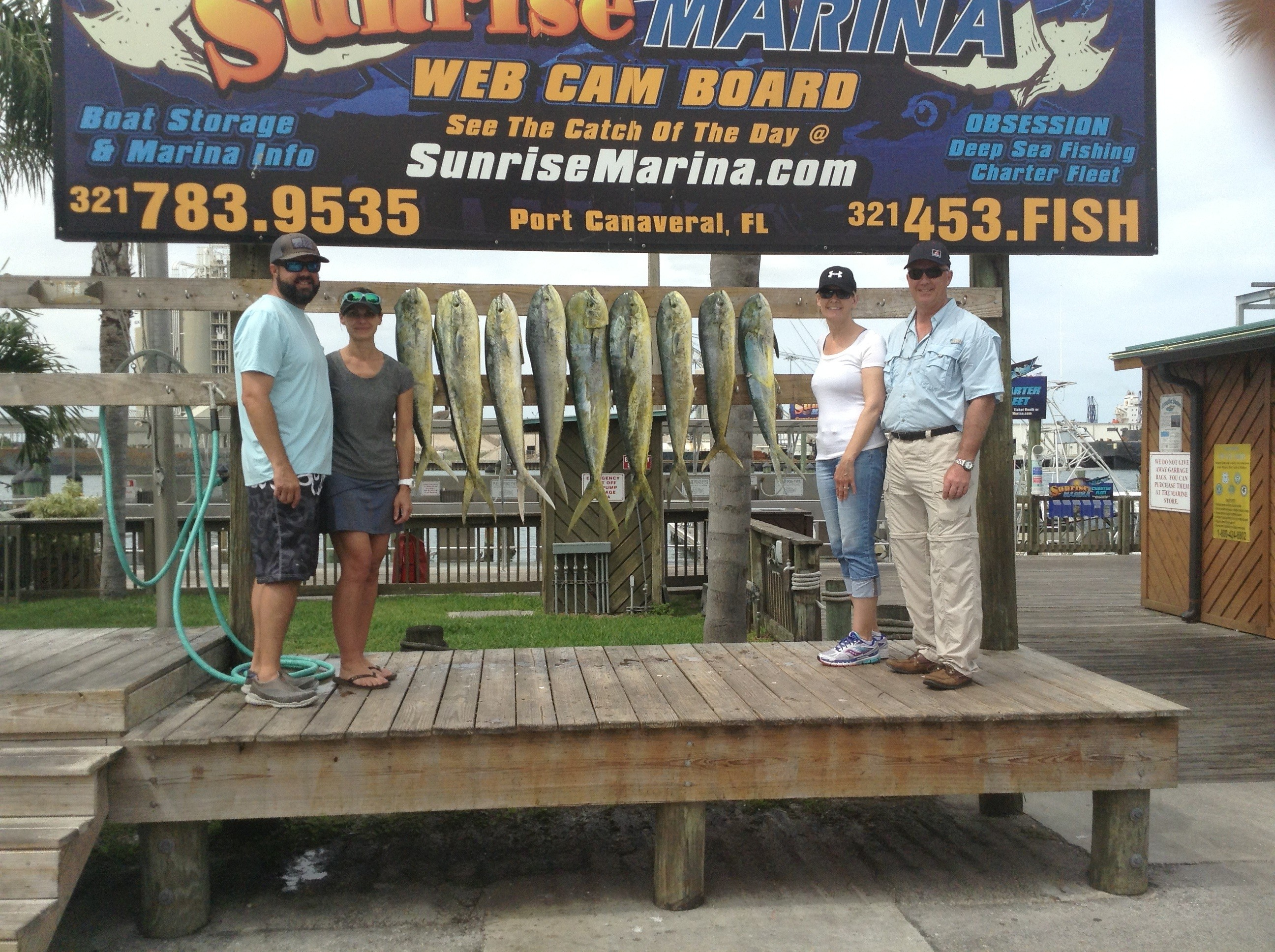 Dolphin charter fishing – port canaveral